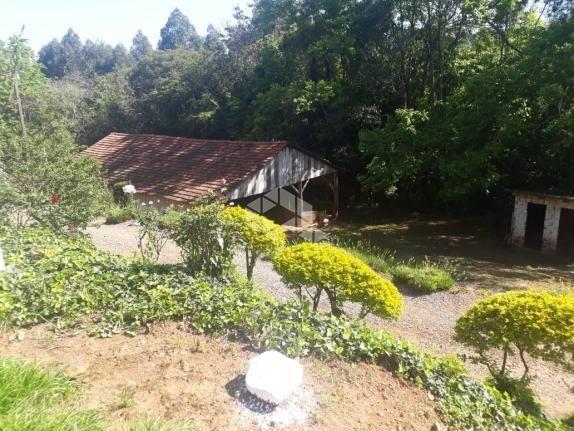 Chácara à venda em São luiz de castro, Boa vista do sul cod:9912945 - Foto 16