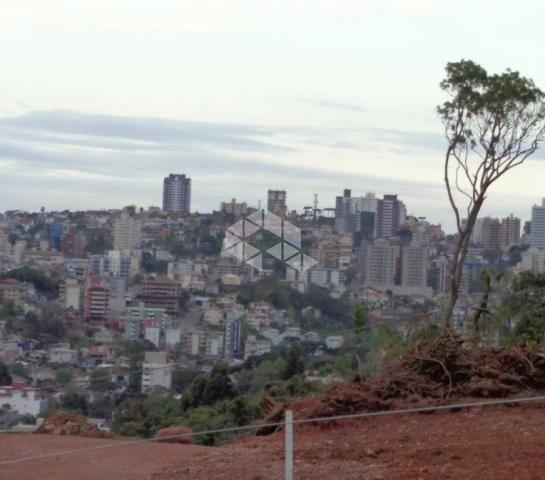 Terreno à venda em Universitário, Bento gonçalves cod:9903096 - Foto 8