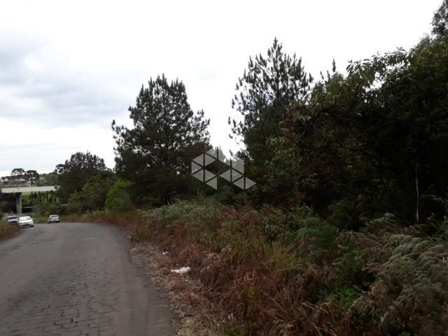 Terreno à venda em Centro, Garibaldi cod:9904474 - Foto 3