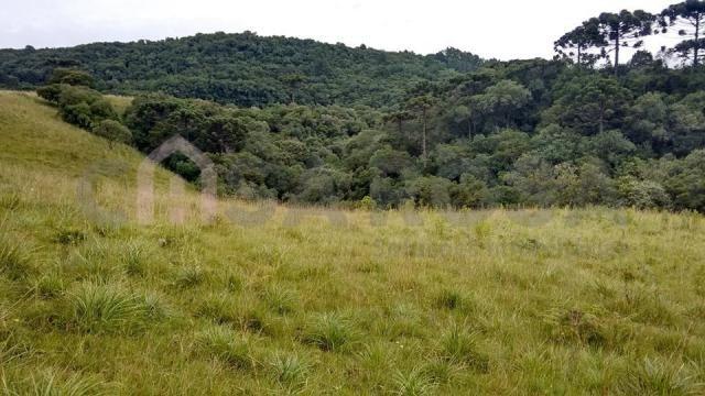 Terreno à venda em Fazenda souza, Caxias do sul cod:298 - Foto 5