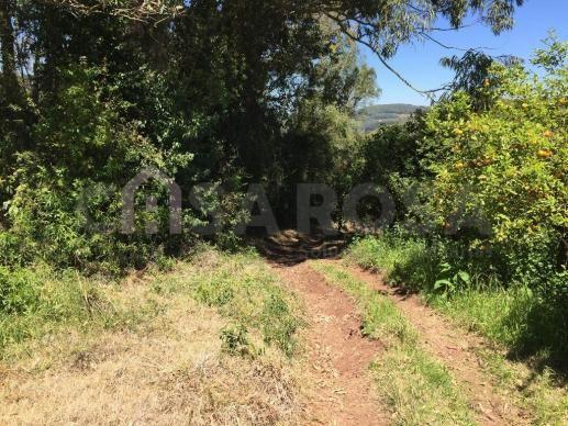 Terreno à venda em Ana rech, Caxias do sul cod:612 - Foto 9