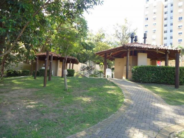 Apartamento à venda com 3 dormitórios em Protásio alves, Porto alegre cod:AP10626 - Foto 8