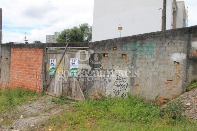 Terreno para alugar em Tingui, Curitiba cod:14394001 - Foto 2