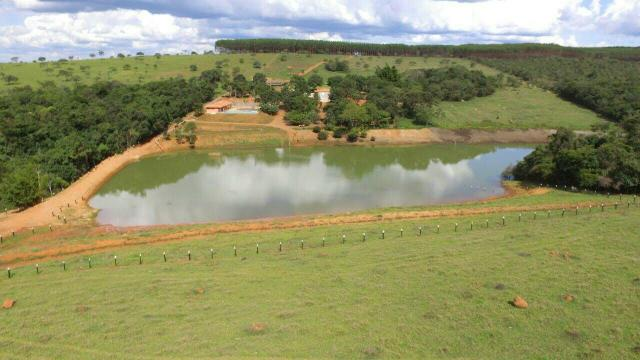 Urgente 20 hectares planalmira 35 km Anápolis. - Foto 11