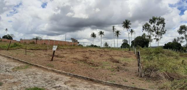 Terrenos lot. maria eduarda - Foto 4