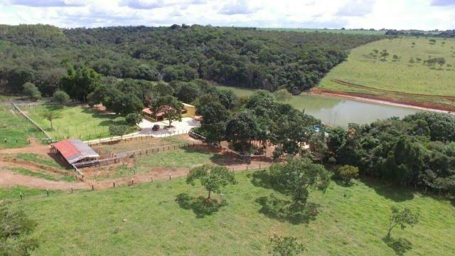 Urgente 20 hectares planalmira 35 km Anápolis. - Foto 4