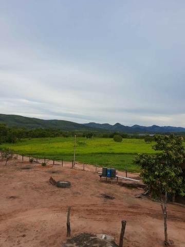 2.200 alqs Solo Argiloso Região De Chuva Palmeirópolis TO - Foto 4