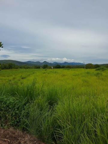 2.200 alqs Solo Argiloso Região De Chuva Palmeirópolis TO - Foto 18