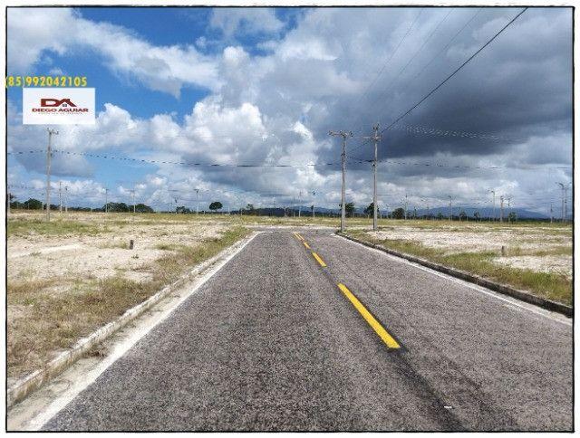 Venha garantir seu investimento >> Terras Horizonte > - Foto 14