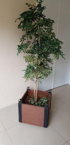 Vaso Decorativo de Palnta em Madeira
