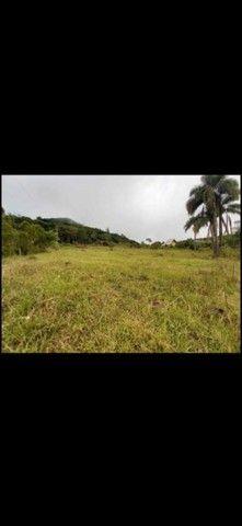 Belíssima área de terra em Morro Reuter - Foto 3