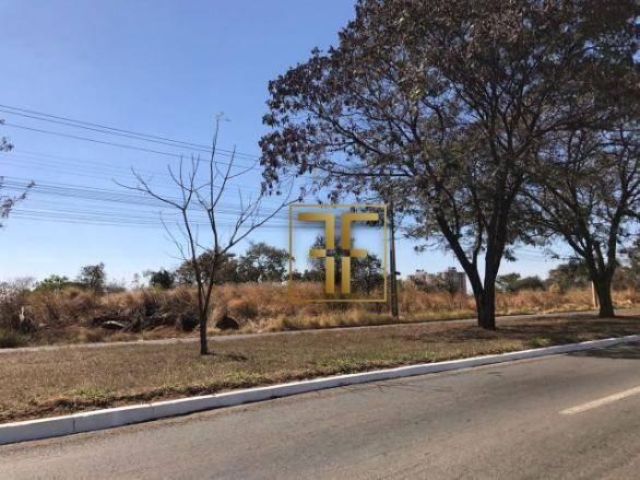 Área à venda, 18.826.77 m², Av. Rio Verde - Foto 6