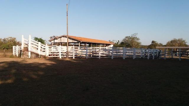 Fazenda 1.200 hectares á 20 km de Cuiabá - Foto 8