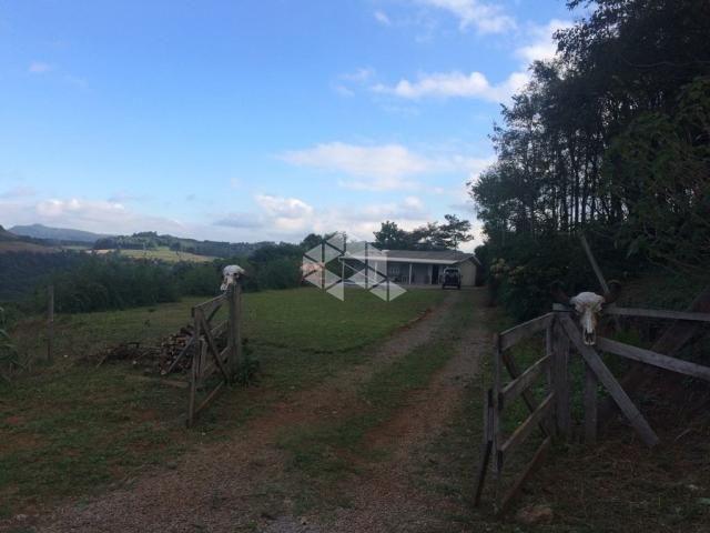 Chácara à venda em São luiz de castro, Boa vista do sul cod:9904527