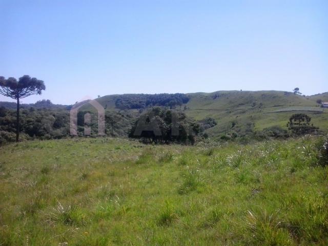 Terreno à venda em Fazenda souza, Caxias do sul cod:298 - Foto 6