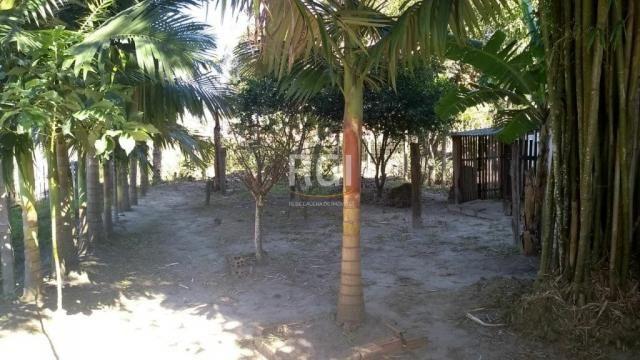 Casa à venda com 2 dormitórios em Guarita, Sombrio cod:LI50877361 - Foto 5