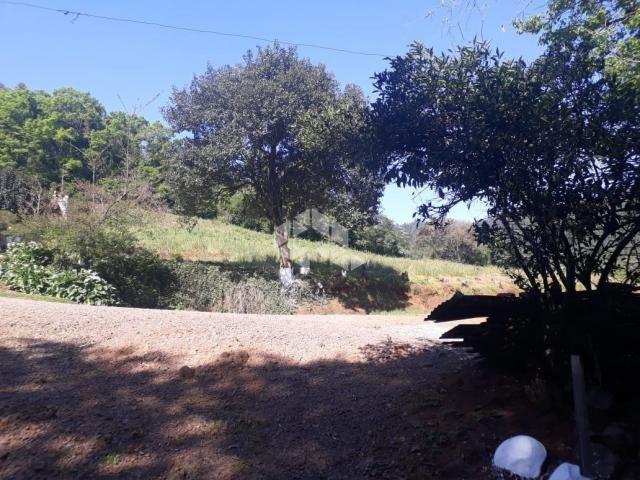 Chácara à venda em São luiz de castro, Boa vista do sul cod:9912945 - Foto 13