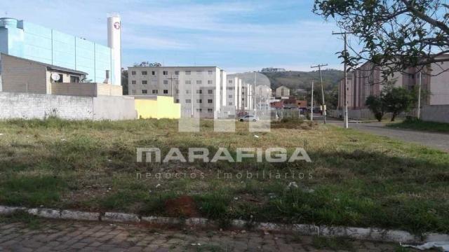 Terreno à venda em Jardim leopoldina, Porto alegre cod:6363