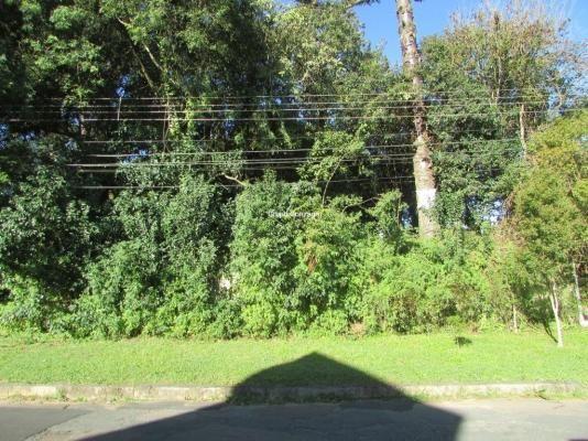 Terreno à venda em São lourenço, Curitiba cod:555