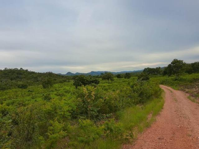 2.200 alqs Solo Argiloso Região De Chuva Palmeirópolis TO - Foto 5