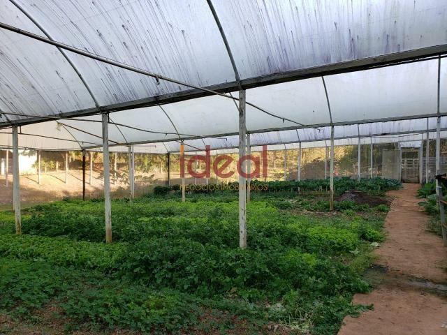 Sítio à venda, 8 quartos, 5 vagas, Zona rural - Viçosa/MG - Foto 14