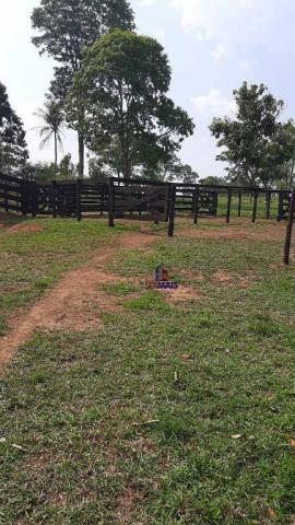 Chácara à venda por R$ 610.000 - Zona Rural - Teixeirópolis/RO - Foto 3