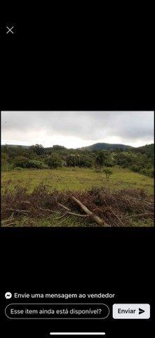 Belíssima área de terra em Morro Reuter - Foto 6