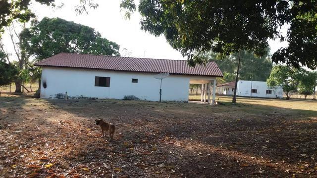 Fazenda 1.200 hectares á 20 km de Cuiabá - Foto 6