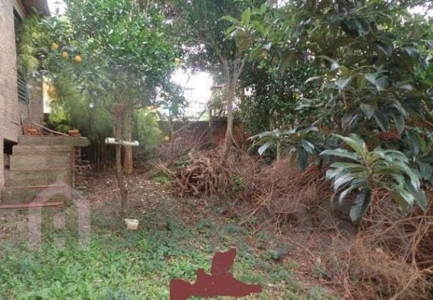 Terreno à venda em Pôr do sol, Caxias do sul cod:2242 - Foto 3
