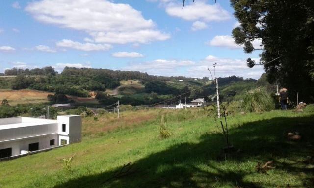 Terreno à venda em Santa catarina, Caxias do sul cod:1854 - Foto 5