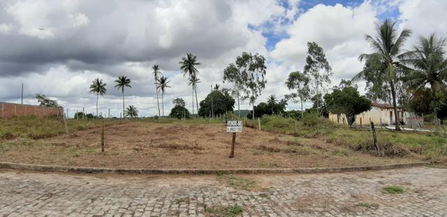 Terrenos lot. maria eduarda - Foto 3