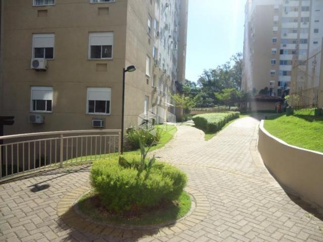 Apartamento à venda com 3 dormitórios em Protásio alves, Porto alegre cod:AP10626 - Foto 12