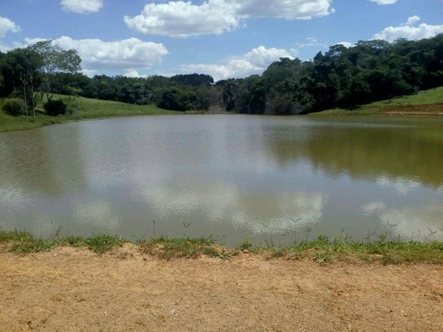 Urgente 20 hectares planalmira 35 km Anápolis. - Foto 10