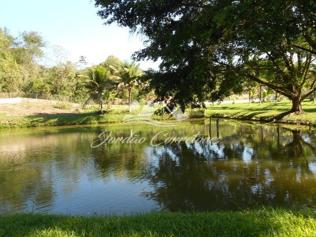 Jordão Corretores - Ótimo sítio 100% plano em Agrobrasil - Foto 8