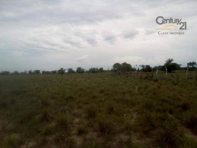 754 há em Barras Piauí - Foto 3
