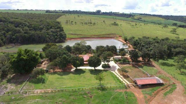 Urgente 20 hectares planalmira 35 km Anápolis. - Foto 18