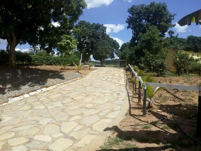 Urgente 20 hectares planalmira 35 km Anápolis. - Foto 15
