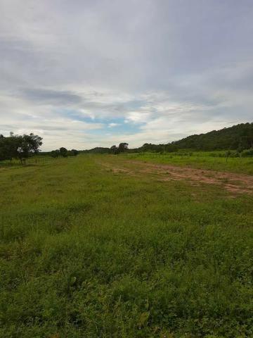 2.200 alqs Solo Argiloso Região De Chuva Palmeirópolis TO - Foto 7