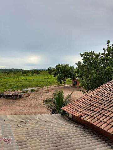 2.200 alqs Solo Argiloso Região De Chuva Palmeirópolis TO - Foto 19