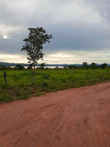 2.200 alqs Solo Argiloso Região De Chuva Palmeirópolis TO - Foto 2