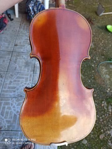 Violino europeu - Foto 2