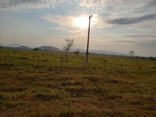 Fazenda pecuária R$ 12.000,00 por HA - Foto 2