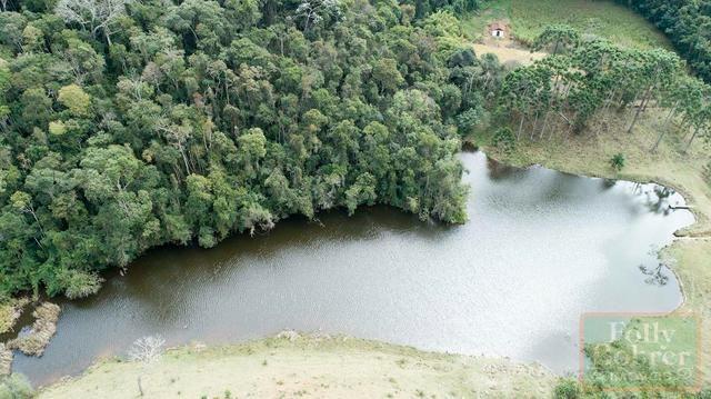 Fazenda com 588,71 hectares, situada na estrada Friburgo-Teresópolis, na altura de Vieira - Foto 10