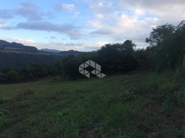 Chácara à venda em São luiz de castro, Boa vista do sul cod:9904527 - Foto 17