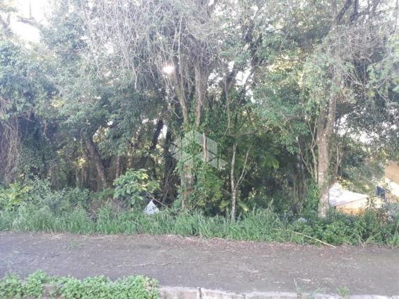 Terreno à venda em Santa marta, Bento gonçalves cod:9908768 - Foto 5