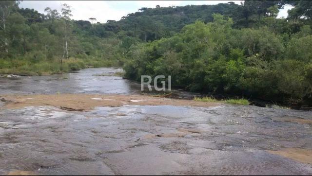 Terreno à venda em Primeiro distrito, São francisco de paula cod:BT6511 - Foto 5