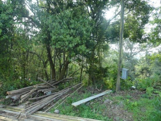 Terreno à venda em Santo antão, Bento gonçalves cod:9908551 - Foto 2
