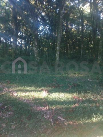 Terreno à venda em Ana rech, Caxias do sul cod:905 - Foto 4