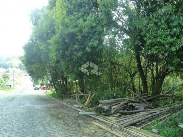 Terreno à venda em Santo antão, Bento gonçalves cod:9908551 - Foto 3