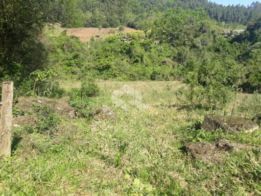Chácara à venda em São luiz de castro, Boa vista do sul cod:9912945 - Foto 6